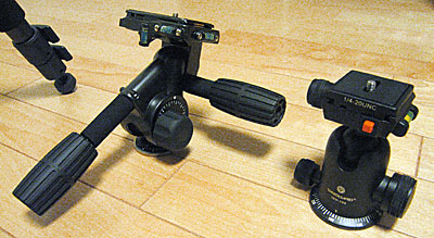 20041310