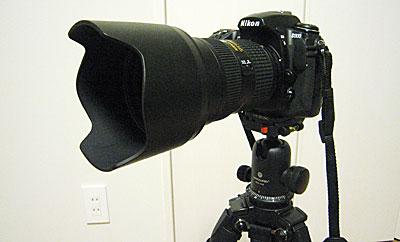 20041313