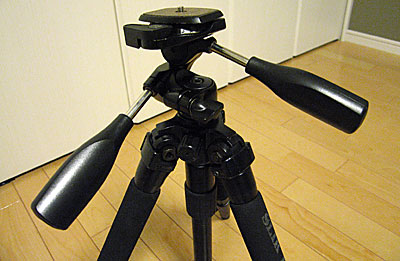 20041319
